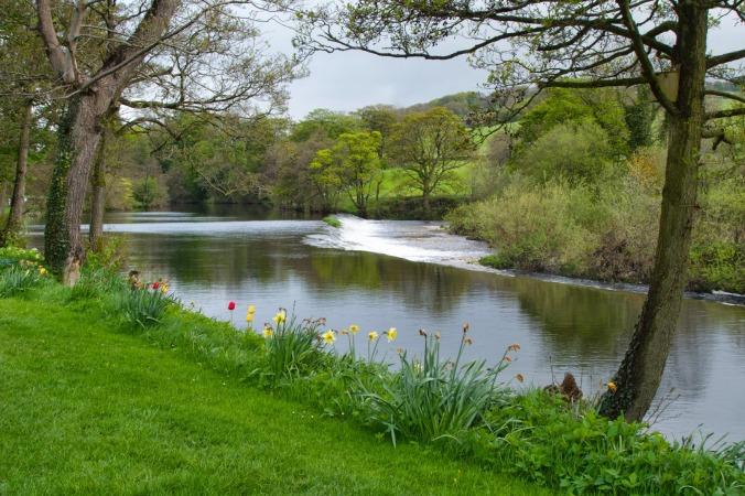 RiverWharfeDay1